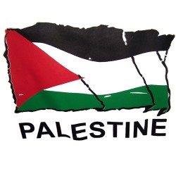 250 ألف ايميل فلسطيني فعال ونشيط
