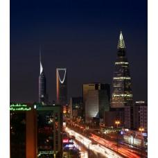 داتا ارقام جوالات نساء الرياض 2017